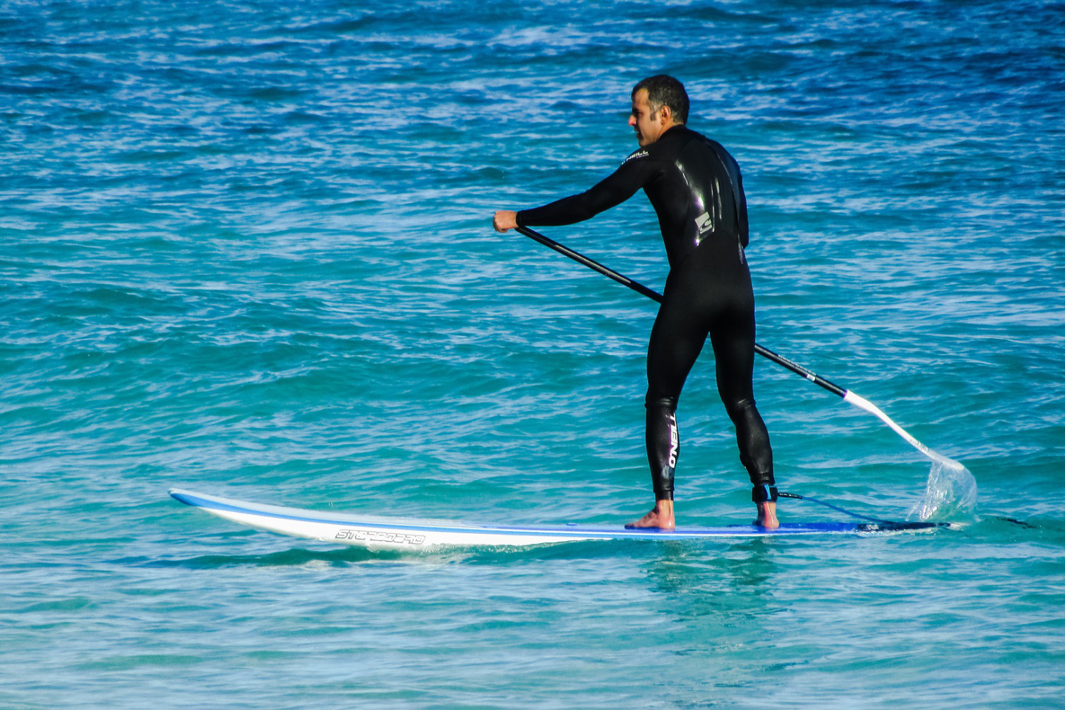 paddle board wetsuit buying guide