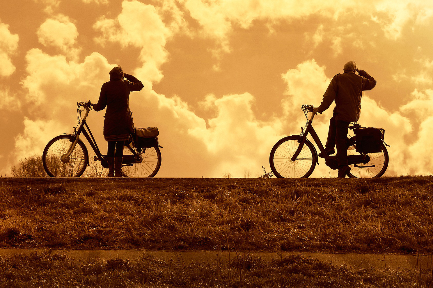 bikers looking at sunset