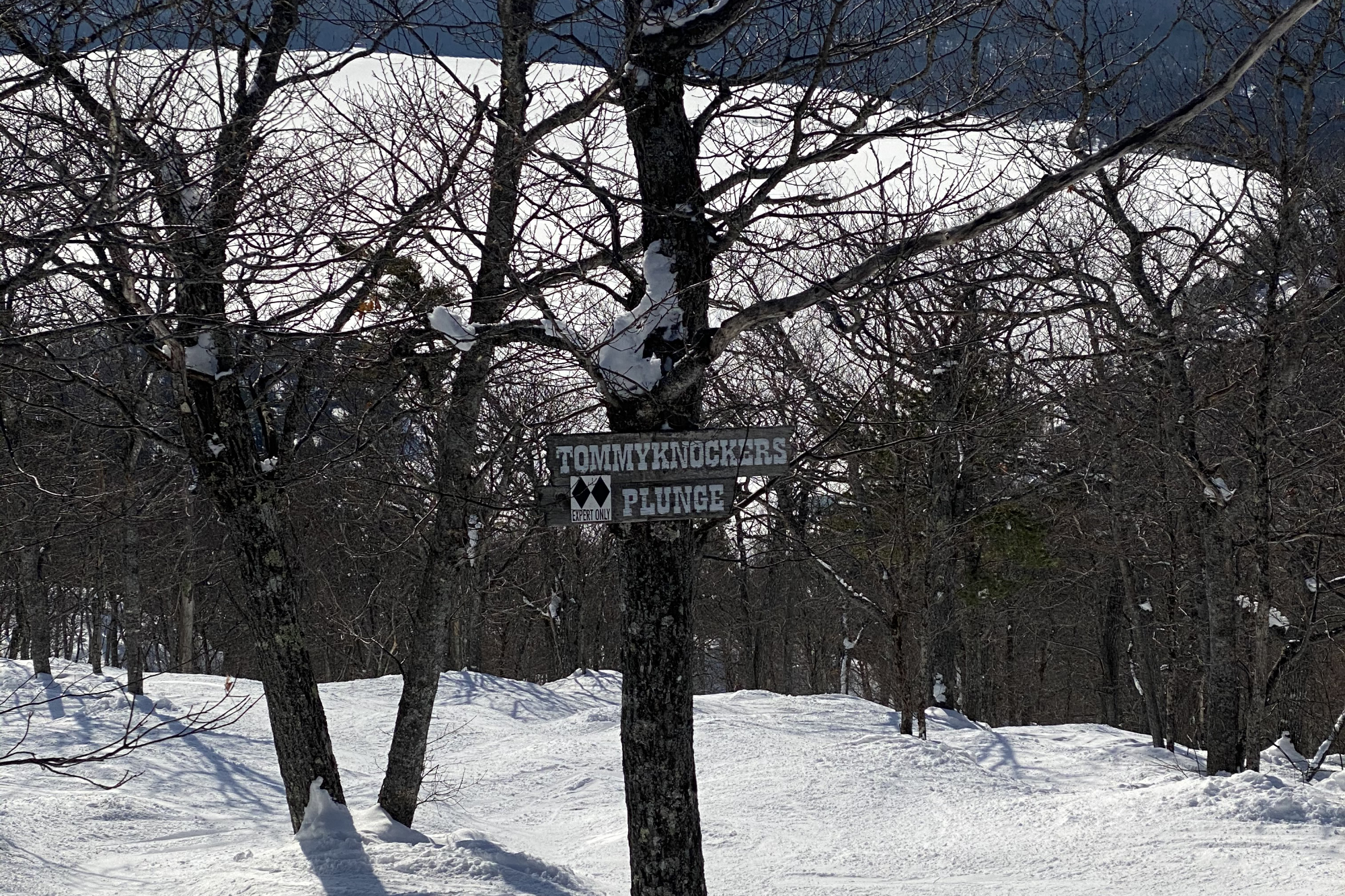 mount bohemia trail sign