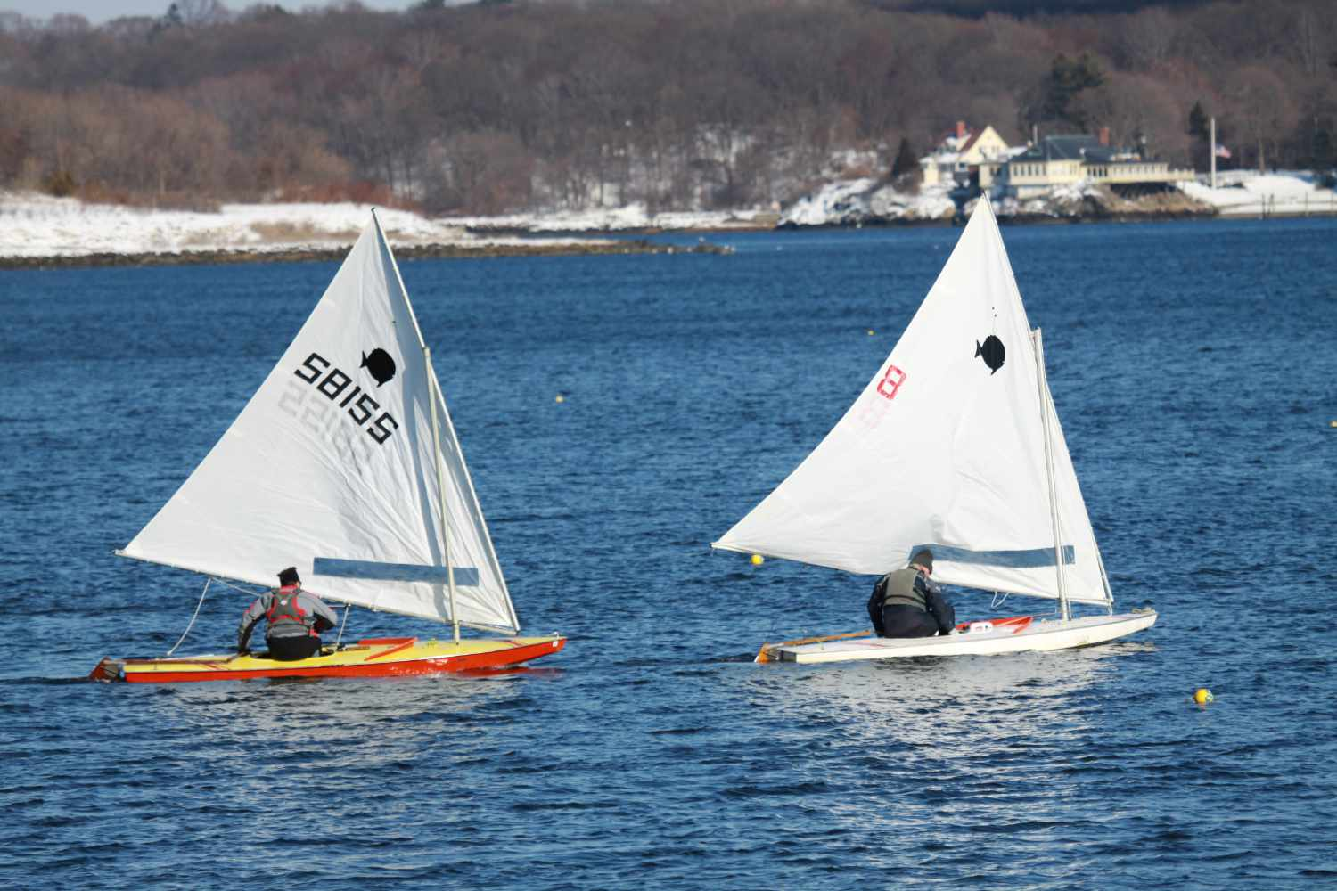 best small sailboat for beginners